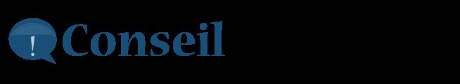 logo-conseil-informatique
