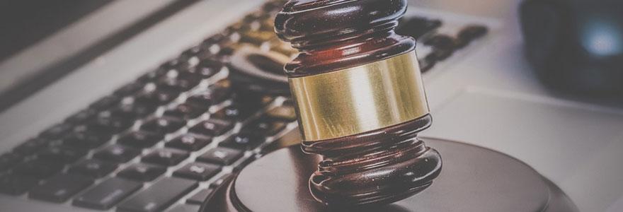 Expert en droit de l'informatique